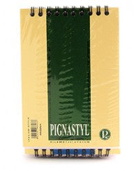 pigna bloc notes basic a6 50 de file